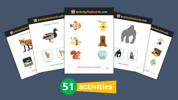animals learning flash cards for kids